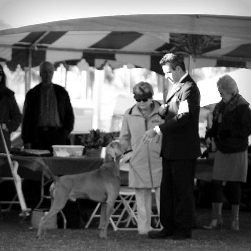 www.trailingfriday.com - January 2014 1936