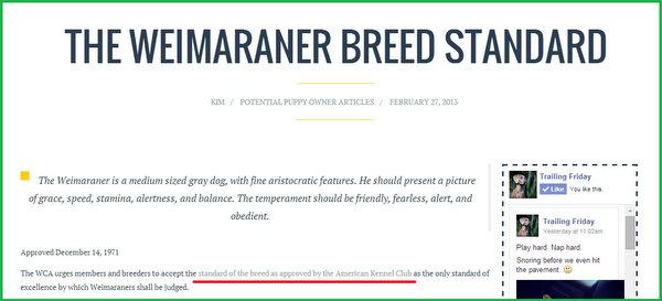 www.barrettweimaraners.com-Breed-Standard_600