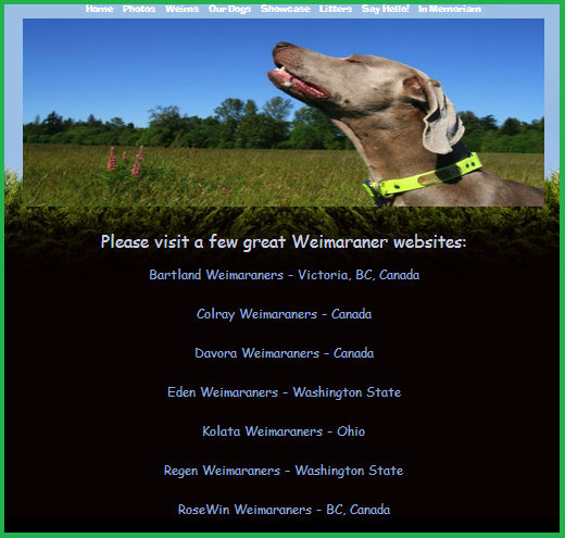 www.barrettweimaraners.com-Reputable-Breeder-Statement-Breeder-Referrals_600