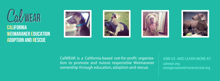 www.calWEAR.org - Facebook Header - 2014-08-14