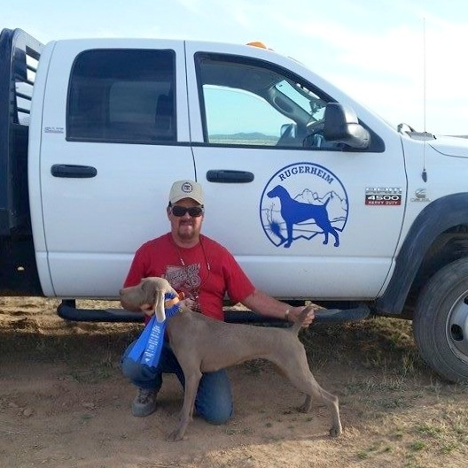 Field News – Gracie Wins the Open Puppy at the Central New Mexico Brittany Club All-Breed Field Trials