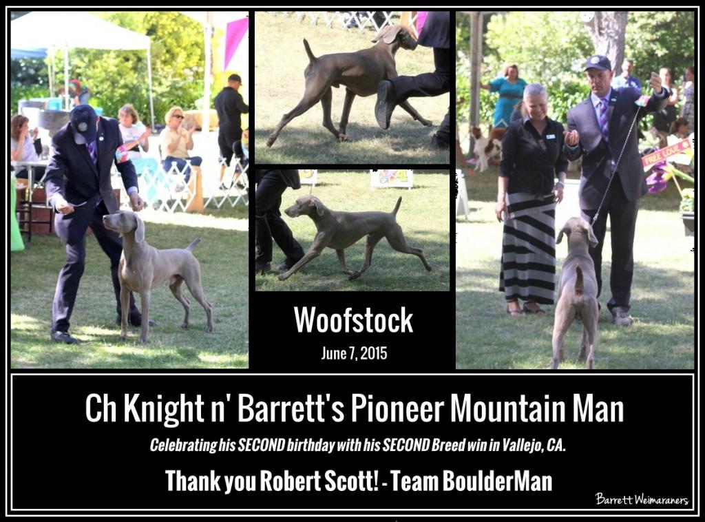 www.barrettweimaraners.com 2015-06-07 - BoulderMan - Final