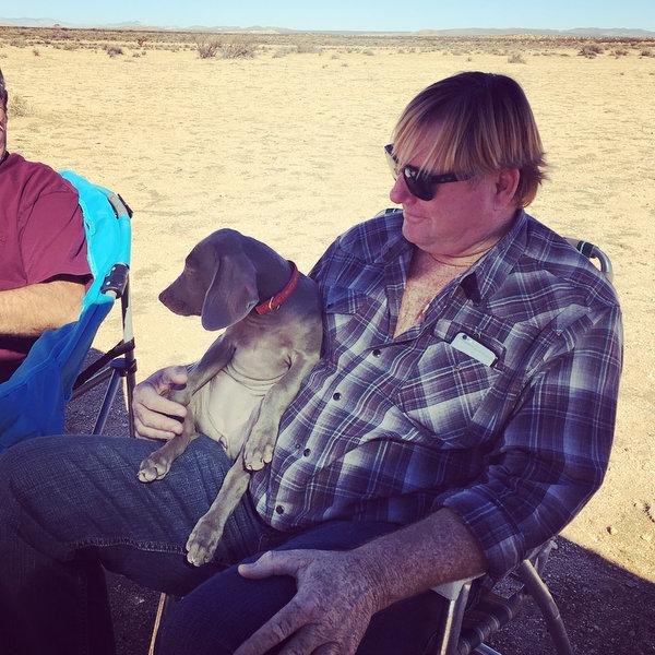www.barrettweimaraners.com - San Diego Brittany Walking Field Trial - 2015 - IMG_4052