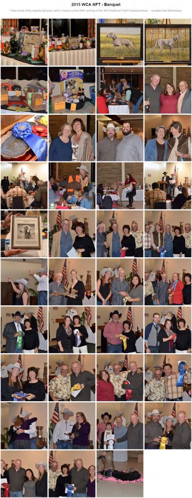 2015 WCA NFT - Banquet