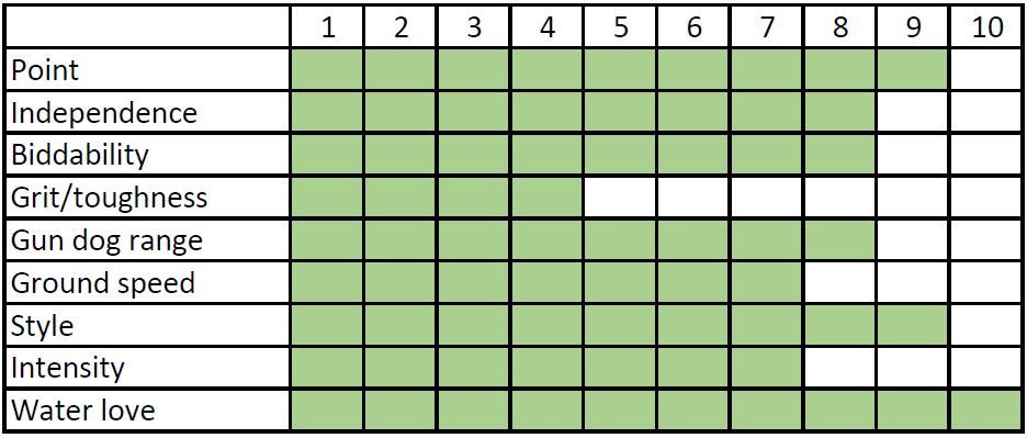Steven – Score Card