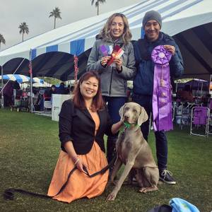 Road Trip # 01 of 2019: Dog Show at Empire Polo Field in Indio, CA