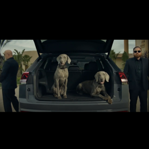 The Barrett Collective – We're Featured in Volkwagen's Latest Commercial!