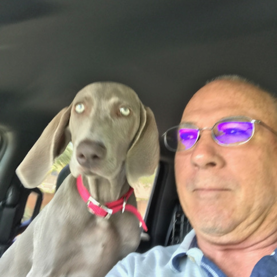 www.barrettweimaraners.com_Barrett Tearin' offtha Two Trax_03_Car Time with Dad