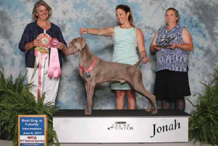 Jonah – Best Dog in Futurity