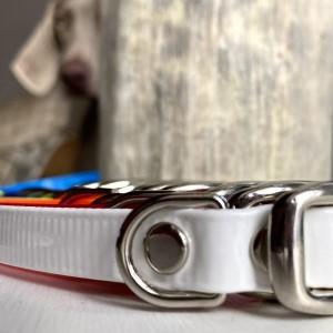 BioThane Dog Collars