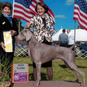 """GCH Camelot's The Best of Times II, """"Jethro"""""""
