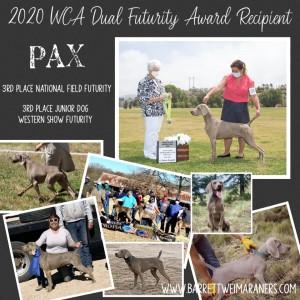 Pax Earns a 2020 WCA Dual Futurity Award